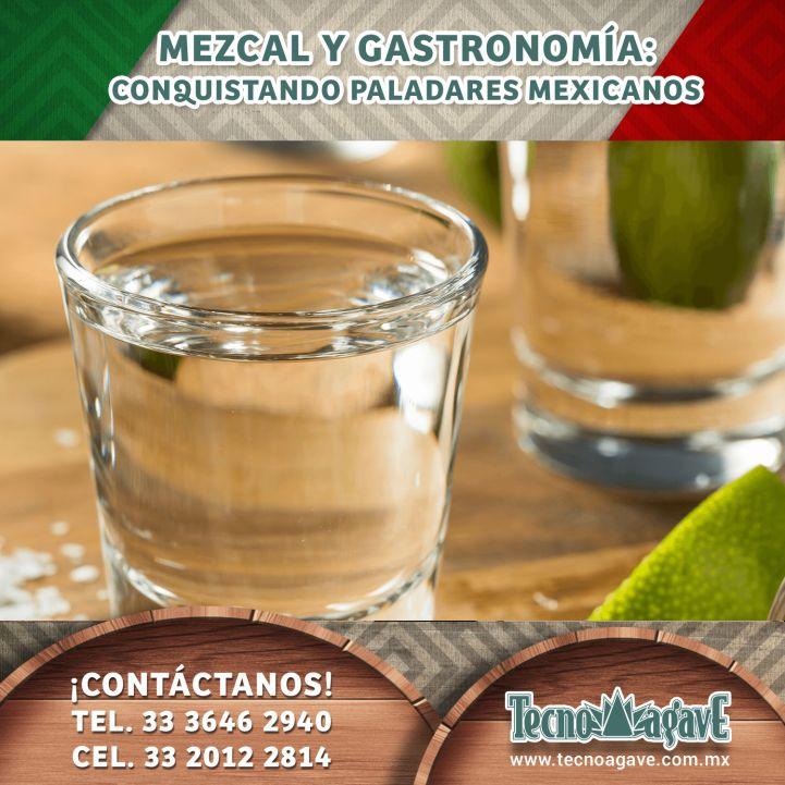 Mezcal y Gastronomía: Conquistando paladares mexicanos.